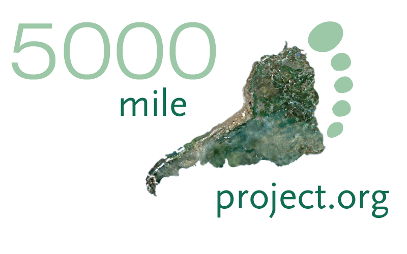 5000 Mile Proyect