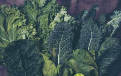 El poder del verde en la alimentación