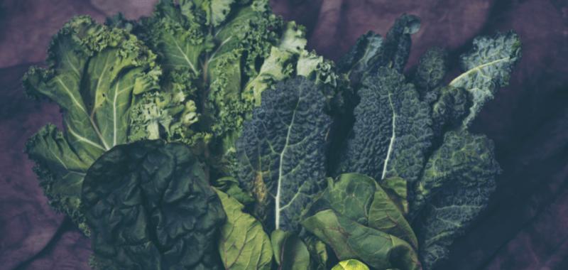 El poder de los vegetales en la alimentación